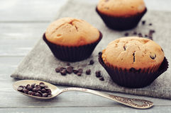 Muffins with chocolate drops Stock Photos