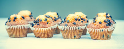 Muffins with chocolate drops Royalty Free Stock Photos