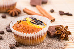 Muffins, chocolate pieces and cinnamon Royalty Free Stock Photo
