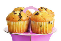 Muffins with chocolate on the stand Stock Photos