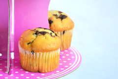 Muffins with chocolate on the stand Stock Images