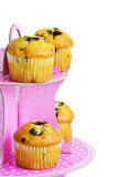 Muffins with chocolate on the stand Royalty Free Stock Image