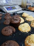 Muffins ciasto Zdjęcie Royalty Free