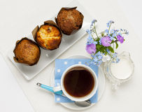 Muffins and coffee royalty free stock image