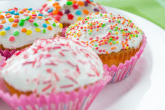 Muffins. Colored sweet muffins in the white plate Royalty Free Stock Photo