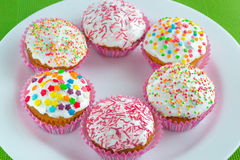 Muffins. Colored sweet muffins in the white plate Stock Photography