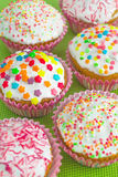 Muffins. Colored sweet muffins in the white plate Stock Image