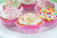 Muffins. Colored sweet muffins in the white plate Royalty Free Stock Photography