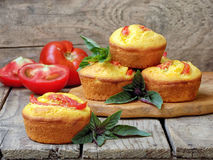 Muffins with corn flour, tomatoes and and basil. Savory muffins with corn flour, tomatoes and and basil royalty free stock photography