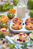 Muffins with cranberries, fruit and milk for Breakfast Royalty Free Stock Images