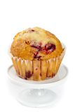 Muffins with cranberry Stock Images