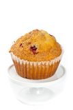 Muffins with cranberry Royalty Free Stock Images