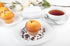Muffins with a cup of tea Royalty Free Stock Photo
