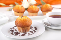 Muffins with a cup of tea Royalty Free Stock Images