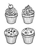 Muffins and cupcakes. Set of muffins and cupcakes. Sketch. Pastry sweets collection  on white background. Hand drawn vector illustration Royalty Free Stock Images