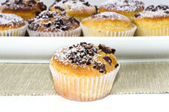 Muffins in cups. Some chocolate muffins in cups stock photo