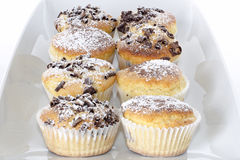 Muffins in cups. Some chocolate muffins in white cup royalty free stock photo