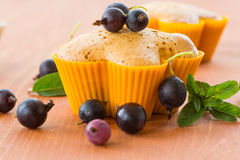 Muffins with currants Royalty Free Stock Image