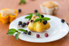 Muffins with currants Stock Photo