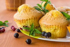 Muffins with currants Royalty Free Stock Photos