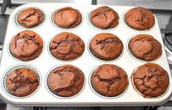 Muffins dark chocholate baking tin pan grey Royalty Free Stock Photos