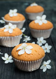 Muffins with delicate flowers on a black rustic table Royalty Free Stock Images