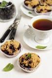 Muffins der Schwarzen Johannisbeere Lizenzfreies Stockbild