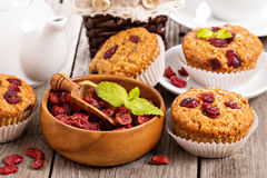 Muffins with dried berries Royalty Free Stock Photo