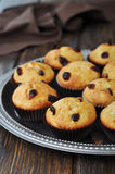 Muffins with dried cranberry Stock Images