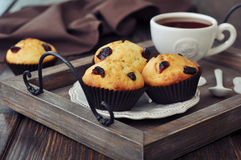 Muffins with dried cranberry Stock Photo