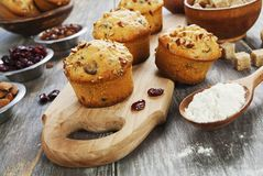 Muffins with dried fruits Stock Images