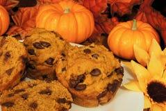 muffins dyniowi Obraz Stock