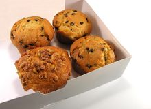 Muffins in een doos. Stock Afbeeldingen
