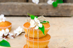 Muffins with filling Stock Image