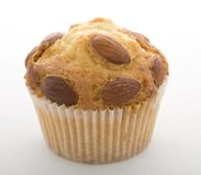 Muffins flmond Stock Photography