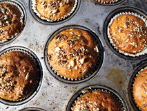Muffins. Fresh baked muffins in tin stock photo