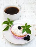 Muffins with fresh blackberries Stock Image