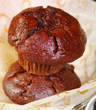 Muffins fresh from oven Royalty Free Stock Photos
