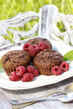 Muffins with fresh raspberries on wooden tray Stock Photos