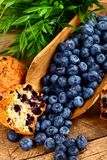 Muffins and fruits Stock Photos