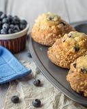 Muffins in het Dienblad stock afbeeldingen