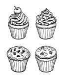 Muffins i babeczki Obrazy Royalty Free