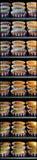 Muffins im Ofen Stockbild