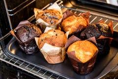 Muffins im Ofen lizenzfreie stockfotos