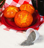 Muffins and ingredients in background. Royalty Free Stock Images