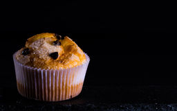 Muffins. Isolated with black background Royalty Free Stock Images