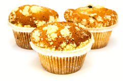 Muffins isolated on white Royalty Free Stock Image