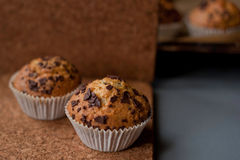 Muffins with love. Two muffins with one muffins in focus Stock Images