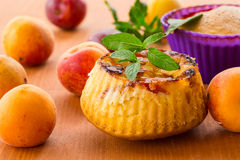 Muffins met abrikozen Royalty-vrije Stock Afbeelding