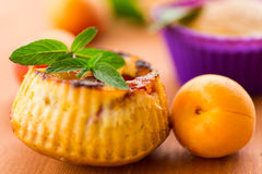 Muffins met abrikozen Royalty-vrije Stock Foto's